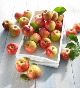 jablka-lackie