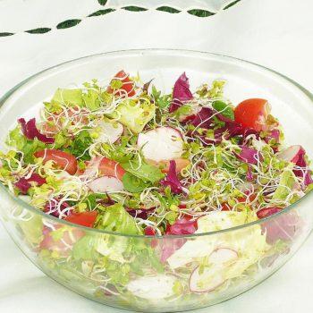 salatka-z-mieszanka-salat